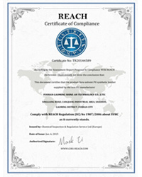 佳格仕专利证书